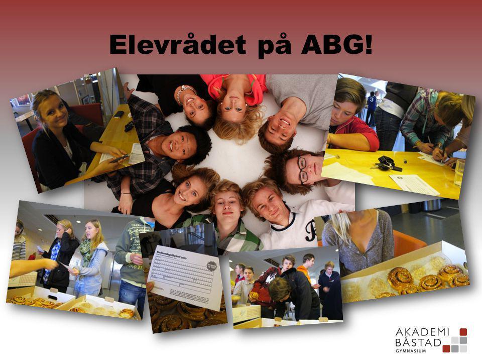 Elevrådet på ABG!