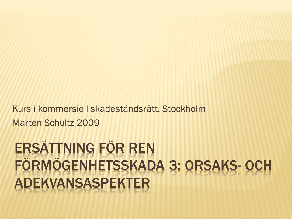 Kurs i kommersiell skadeståndsrätt, Stockholm Mårten Schultz 2009
