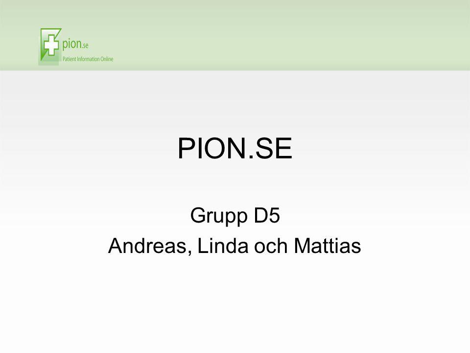 PION.SE Grupp D5 Andreas, Linda och Mattias