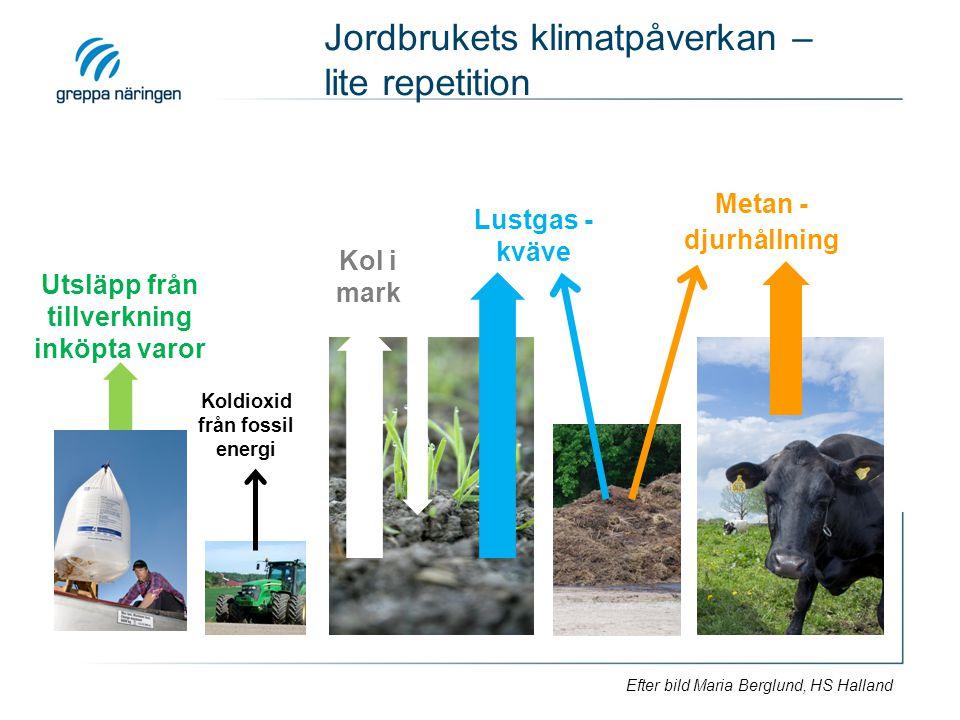 Jordbrukets klimatpåverkan – lite repetition Metan - djurhållning Lustgas - kväve Kol i mark Koldioxid från fossil energi Utsläpp från tillverkning in