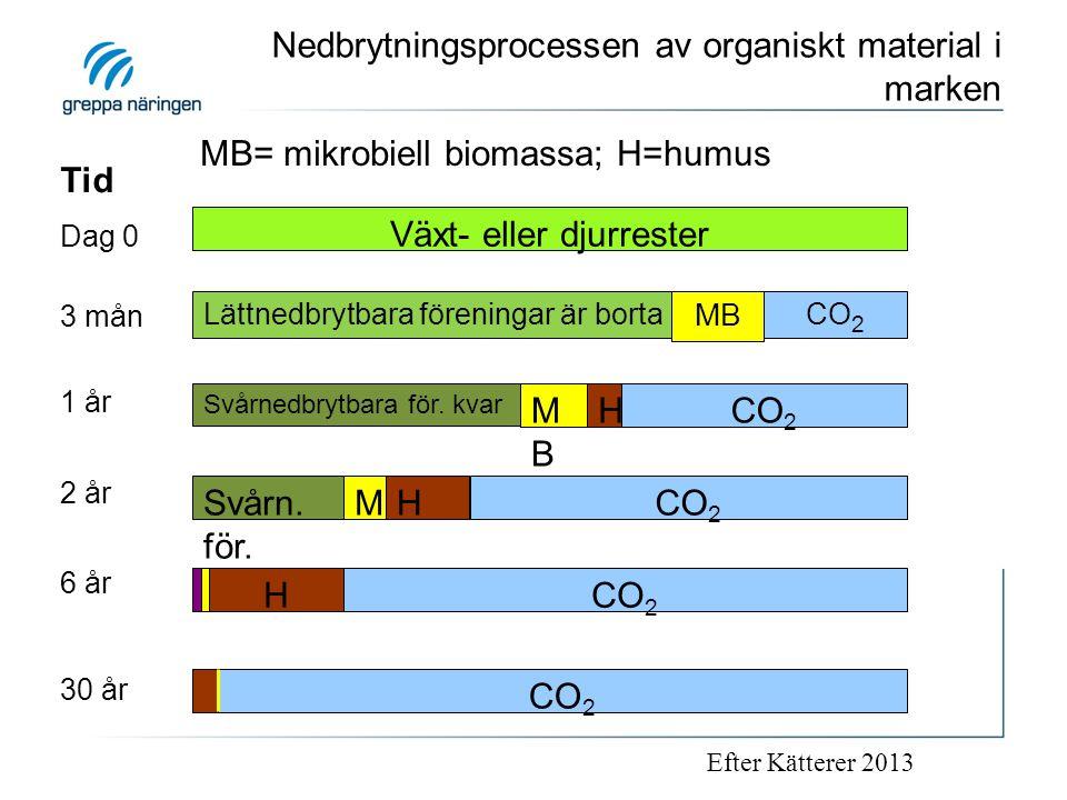Nedbrytningsprocessen av organiskt material i marken Växt- eller djurrester Lättnedbrytbara föreningar är borta MB CO 2 Svårnedbrytbara för. kvar MBMB