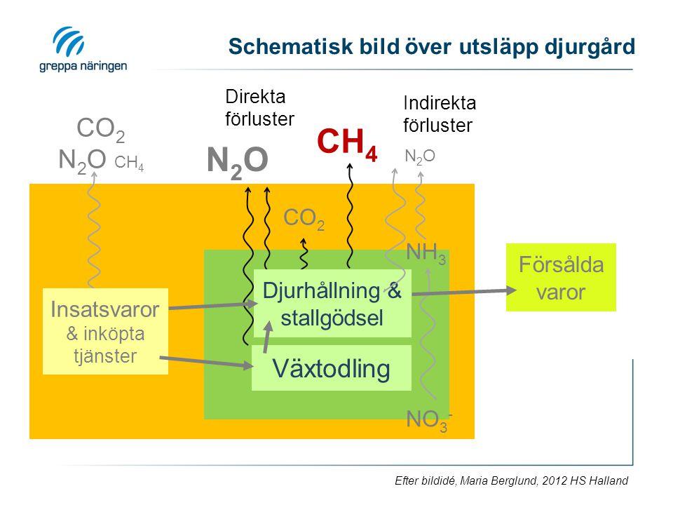 Djurhållning, stallgödsel Schematisk bild över utsläpp djurgård CO 2 N 2 O CH 4 NO 3 - N2ON2O N2ON2O CO 2 Försålda varor Insatsvaror & inköpta tjänste