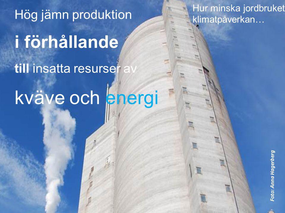 Hög jämn produktion i förhållande till insatta resurser av kväve och energi Hur minska jordbrukets klimatpåverkan… Foto: Anna Hagerberg