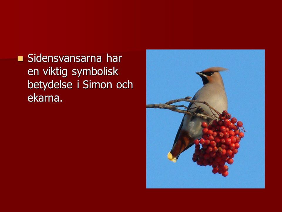 Sidensvansarna har en viktig symbolisk betydelse i Simon och ekarna. Sidensvansarna har en viktig symbolisk betydelse i Simon och ekarna.