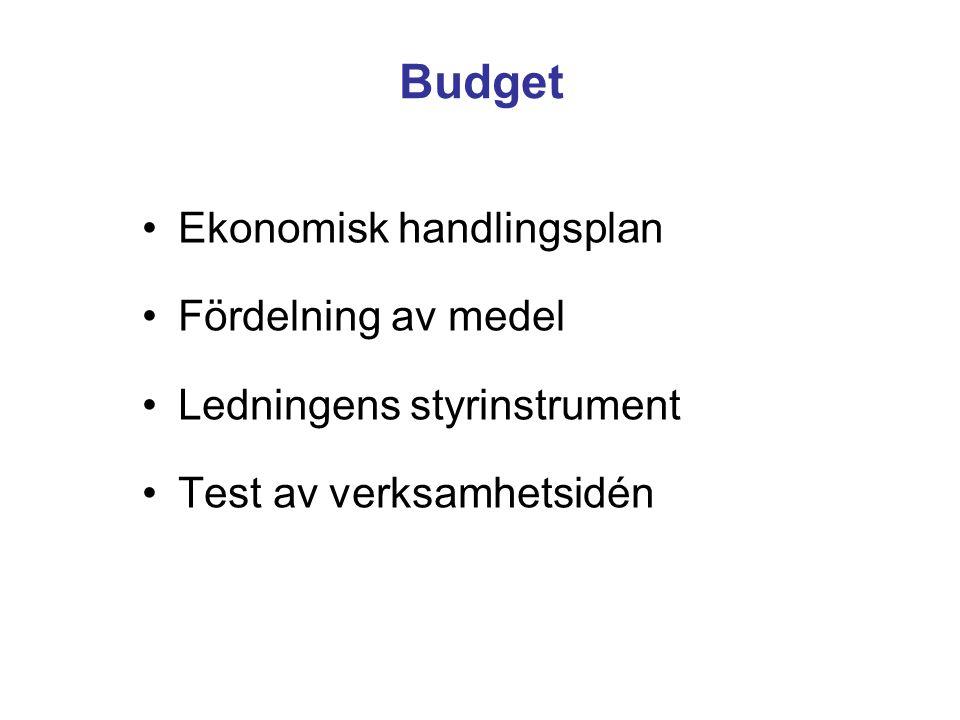 Budget Ekonomisk handlingsplan Fördelning av medel Ledningens styrinstrument Test av verksamhetsidén