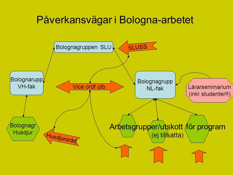 Påverkansvägar i Bologna-arbetet Bolognagruppen SLU Bolognarupp VH-fak Bolognagrupp NL-fak Bolognagr Husdjur Husdjursråd Vice ordf utb.