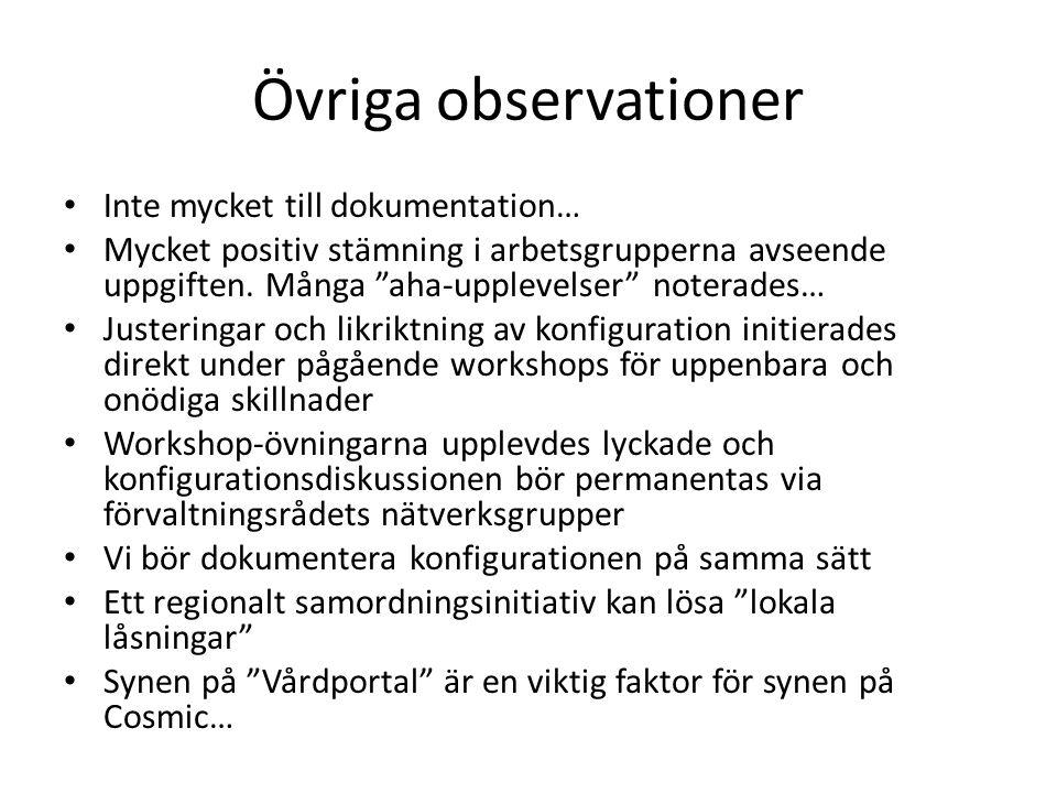 Övriga observationer Inte mycket till dokumentation… Mycket positiv stämning i arbetsgrupperna avseende uppgiften.