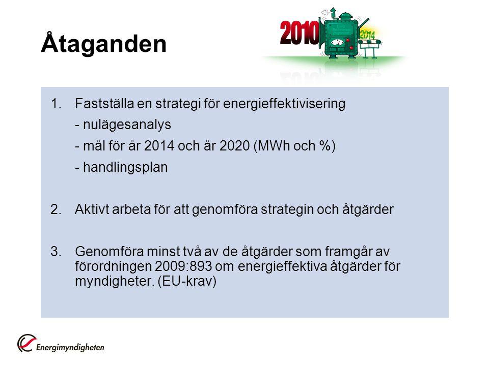 Åtaganden 1.Fastställa en strategi för energieffektivisering - nulägesanalys - mål för år 2014 och år 2020 (MWh och %) - handlingsplan 2.Aktivt arbeta för att genomföra strategin och åtgärder 3.Genomföra minst två av de åtgärder som framgår av förordningen 2009:893 om energieffektiva åtgärder för myndigheter.