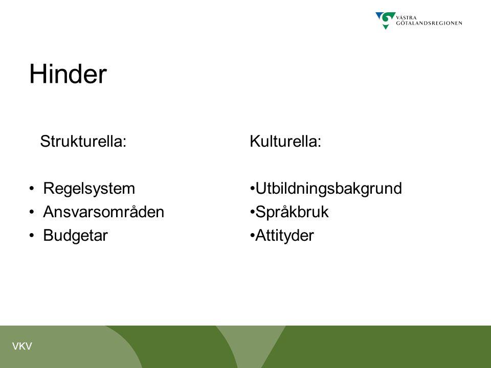 VKV Hinder Strukturella: Regelsystem Ansvarsområden Budgetar Kulturella: Utbildningsbakgrund Språkbruk Attityder