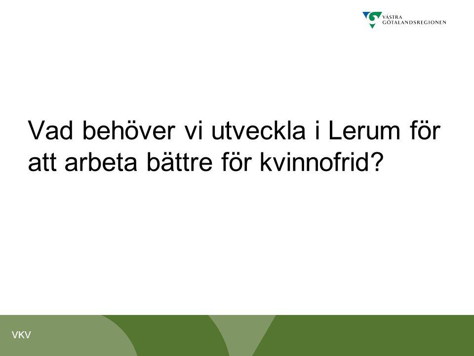 VKV Vad behöver vi utveckla i Lerum för att arbeta bättre för kvinnofrid?