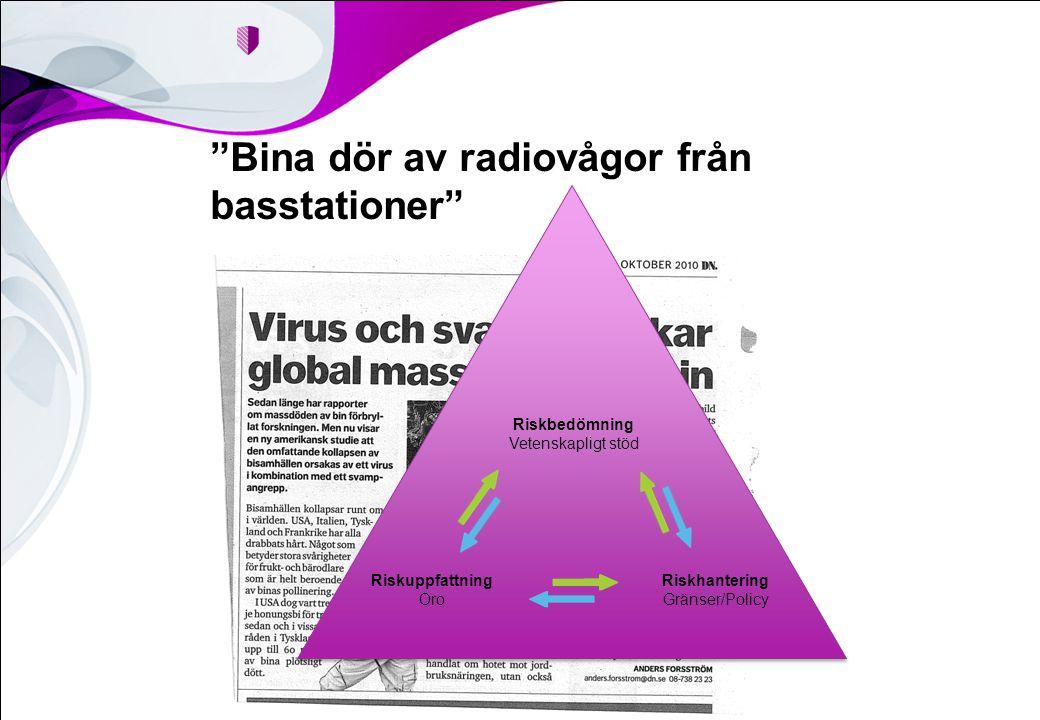 Bina dör av radiovågor från basstationer Riskbedömning Vetenskapligt stöd Riskhantering Gränser/Policy Riskuppfattning Oro
