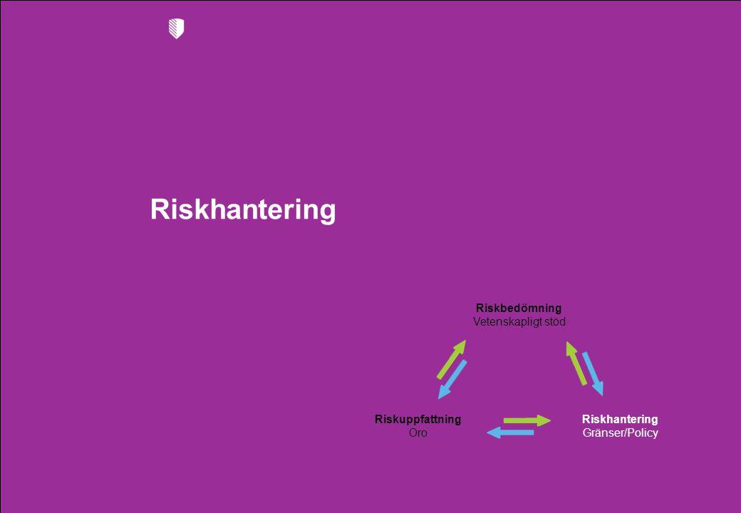 Riskhantering Riskbedömning Vetenskapligt stöd Riskhantering Gränser/Policy Riskuppfattning Oro