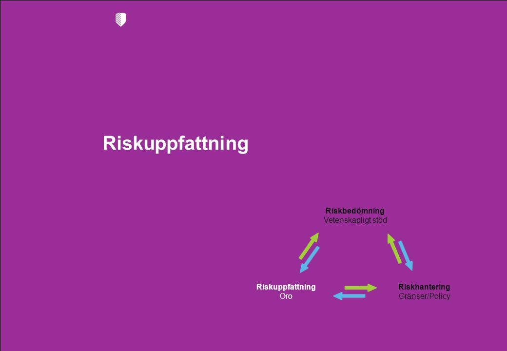 Riskuppfattning Riskbedömning Vetenskapligt stöd Riskhantering Gränser/Policy Riskuppfattning Oro