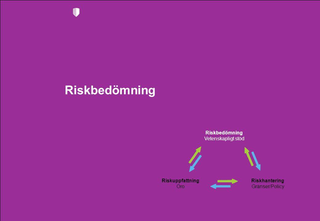 Riskbedömning Vetenskapligt stöd Riskhantering Gränser/Policy Riskuppfattning Oro