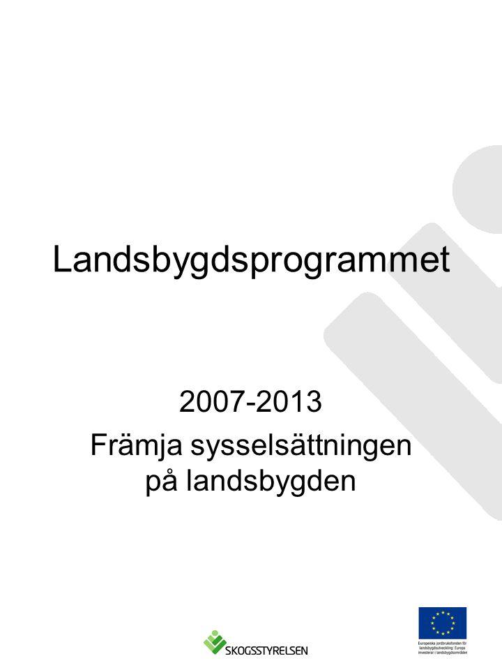 Landsbygdsprogrammet 2007-2013 Främja sysselsättningen på landsbygden