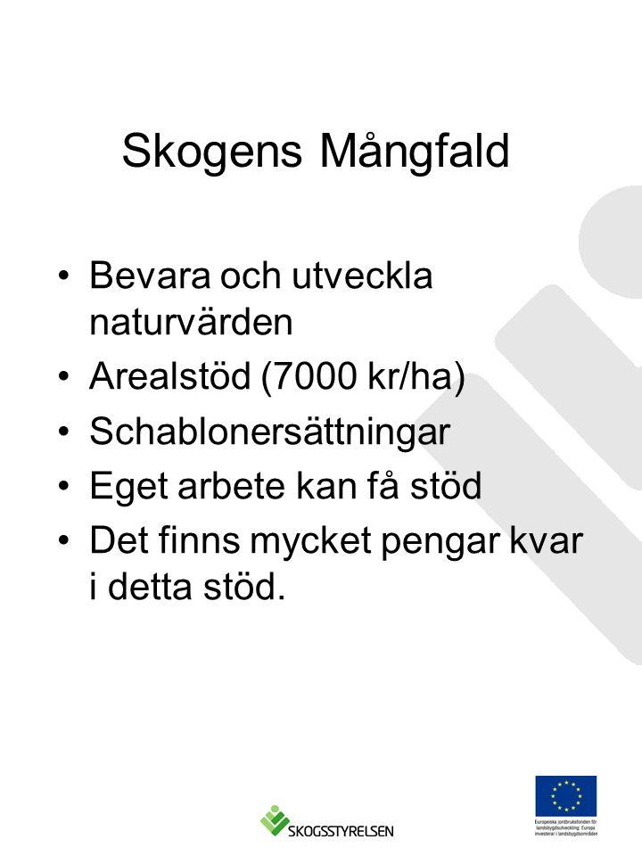 Skogens Mångfald Bevara och utveckla naturvärden Arealstöd (7000 kr/ha) Schablonersättningar Eget arbete kan få stöd Det finns mycket pengar kvar i detta stöd.