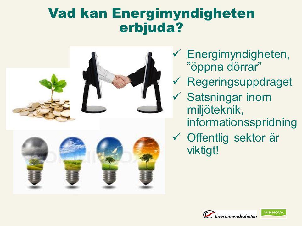 Infogad sidfot, datum och sidnummer syns bara i utskrift (infoga genom fliken Infoga -> Sidhuvud/sidfot) Vad kan Energimyndigheten erbjuda? Energimynd