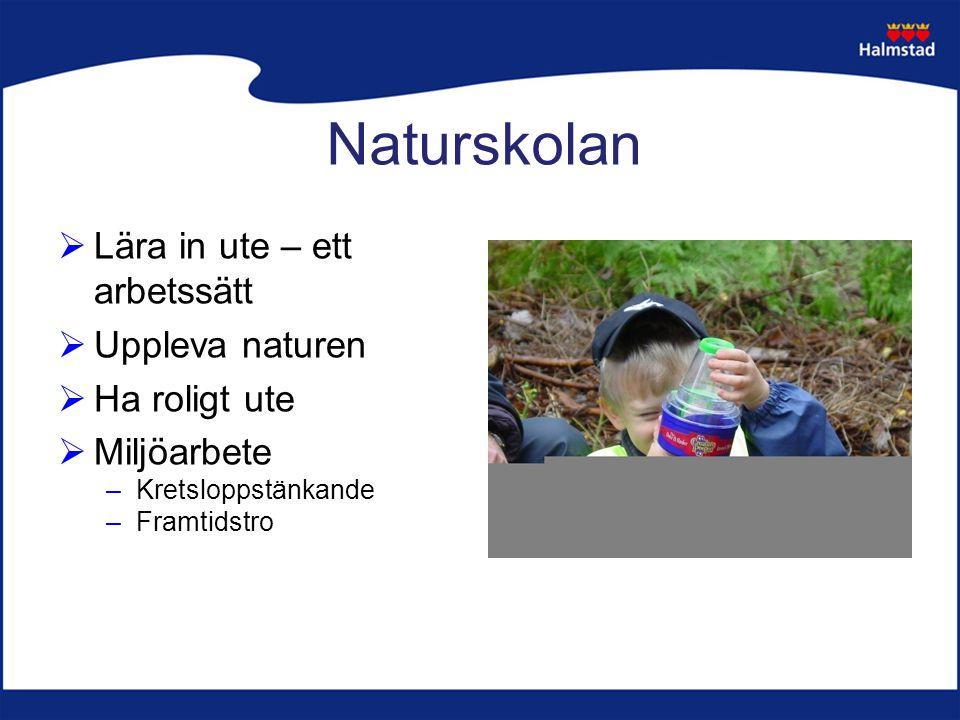 Naturskolan  Lära in ute – ett arbetssätt  Uppleva naturen  Ha roligt ute  Miljöarbete –Kretsloppstänkande –Framtidstro