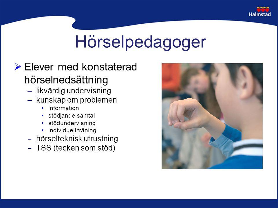 Hörselpedagoger  Elever med konstaterad hörselnedsättning –likvärdig undervisning –kunskap om problemen information stödjande samtal stödundervisning individuell träning ‒ hörselteknisk utrustning ‒ TSS (tecken som stöd)