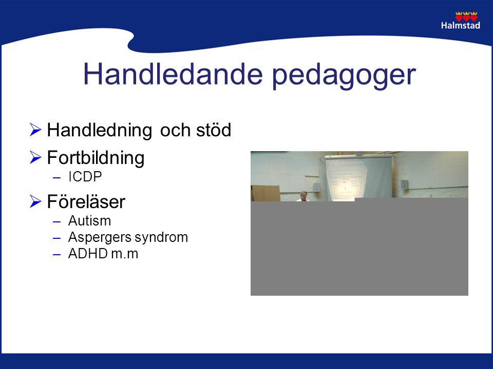  Handledning och stöd  Fortbildning –ICDP  Föreläser –Autism –Aspergers syndrom –ADHD m.m Handledande pedagoger