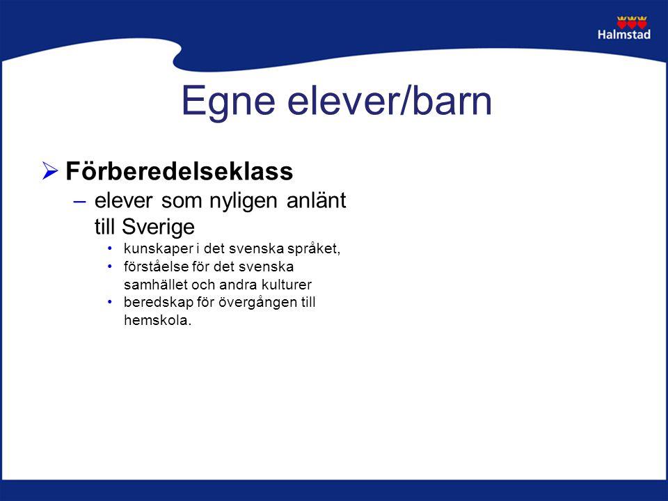 Egne elever/barn  Förberedelseklass –elever som nyligen anlänt till Sverige kunskaper i det svenska språket, förståelse för det svenska samhället och andra kulturer beredskap för övergången till hemskola.