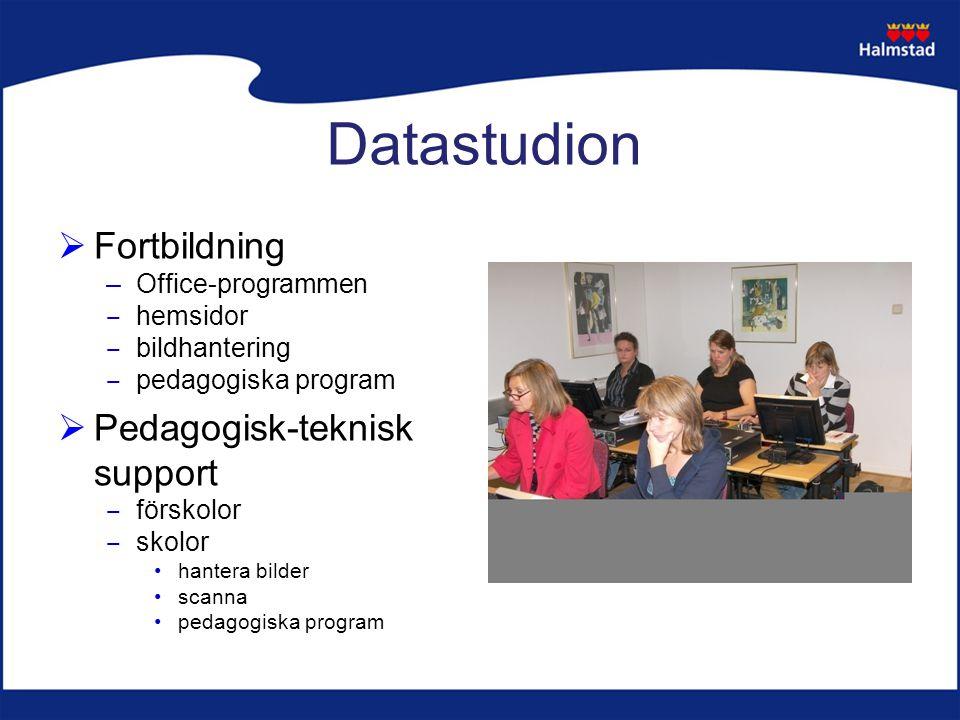Datastudion  Fortbildning –Office-programmen ‒ hemsidor ‒ bildhantering ‒ pedagogiska program  Pedagogisk-teknisk support ‒ förskolor ‒ skolor hantera bilder scanna pedagogiska program