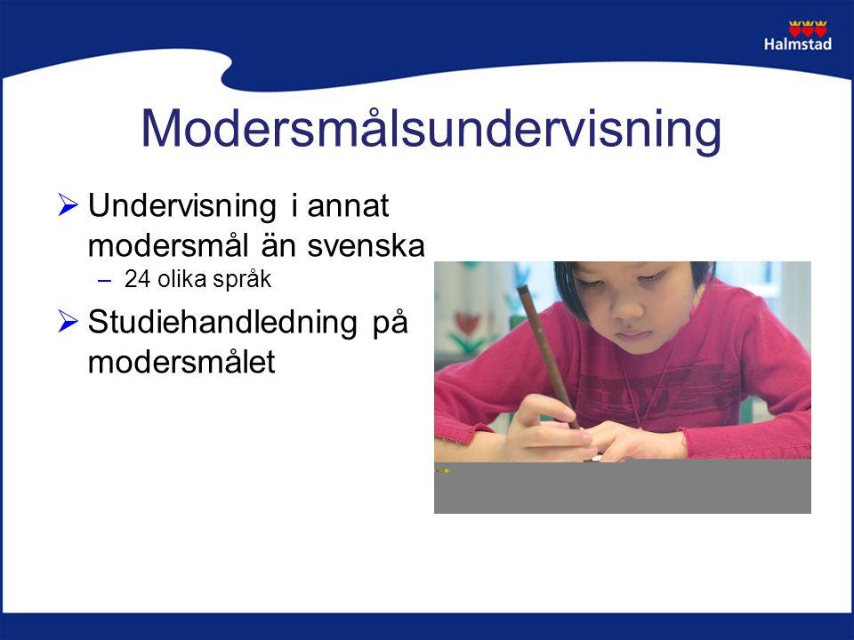 Modersmålsundervisning  Undervisning i annat modersmål än svenska –24 olika språk  Studiehandledning på modersmålet