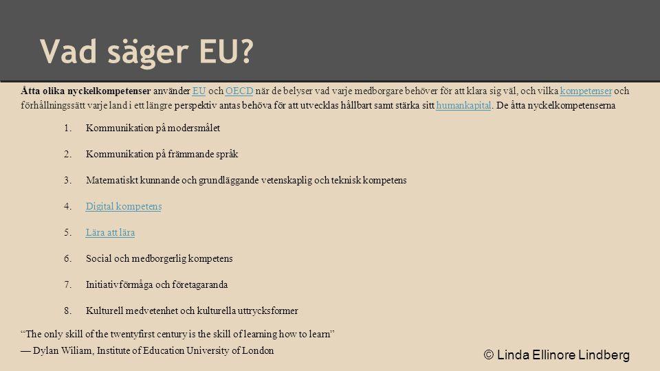 Vad säger EU? Åtta olika nyckelkompetenser använder EU och OECD när de belyser vad varje medborgare behöver för att klara sig väl, och vilka kompetens
