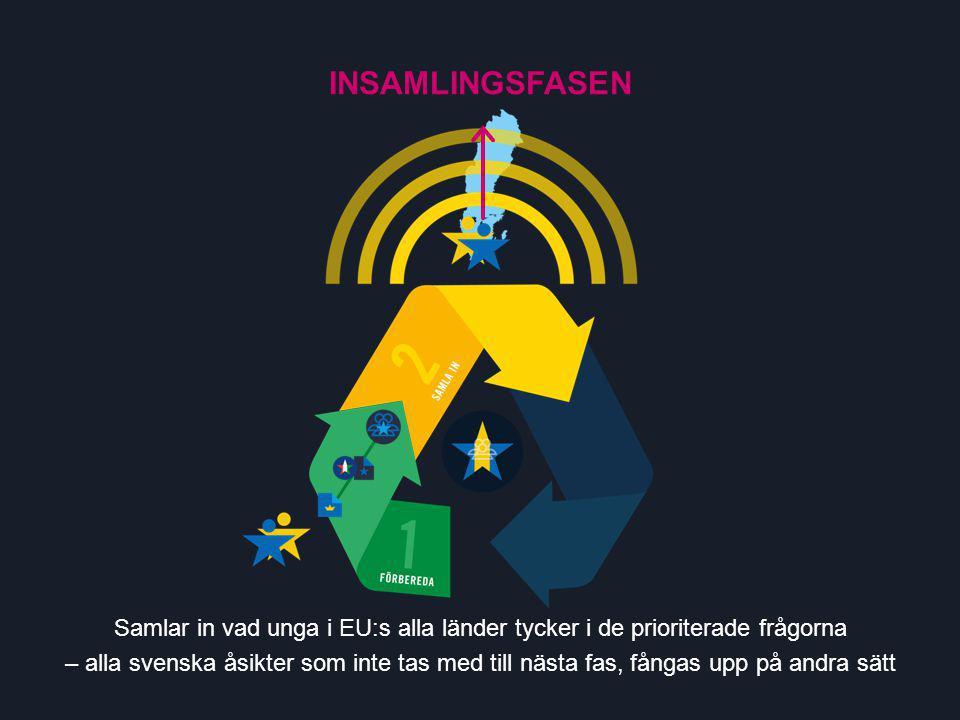 Samlar in vad unga i EU:s alla länder tycker i de prioriterade frågorna – alla svenska åsikter som inte tas med till nästa fas, fångas upp på andra sätt INSAMLINGSFASEN