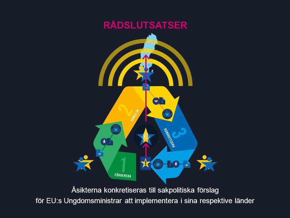 RÅDSLUTSATSER Åsikterna konkretiseras till sakpolitiska förslag för EU:s Ungdomsministrar att implementera i sina respektive länder