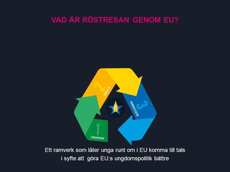 INSAMLINGSFASEN Samlar in vad unga i EU:s alla länder tycker i de prioriterade frågorna – alla svenska åsikter som inte tas med till nästa fas samlas upp på andra sätt