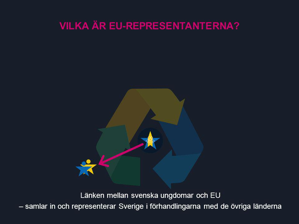 Länken mellan svenska ungdomar och EU – samlar in och representerar Sverige i förhandlingarna med de övriga länderna VILKA ÄR EU-REPRESENTANTERNA