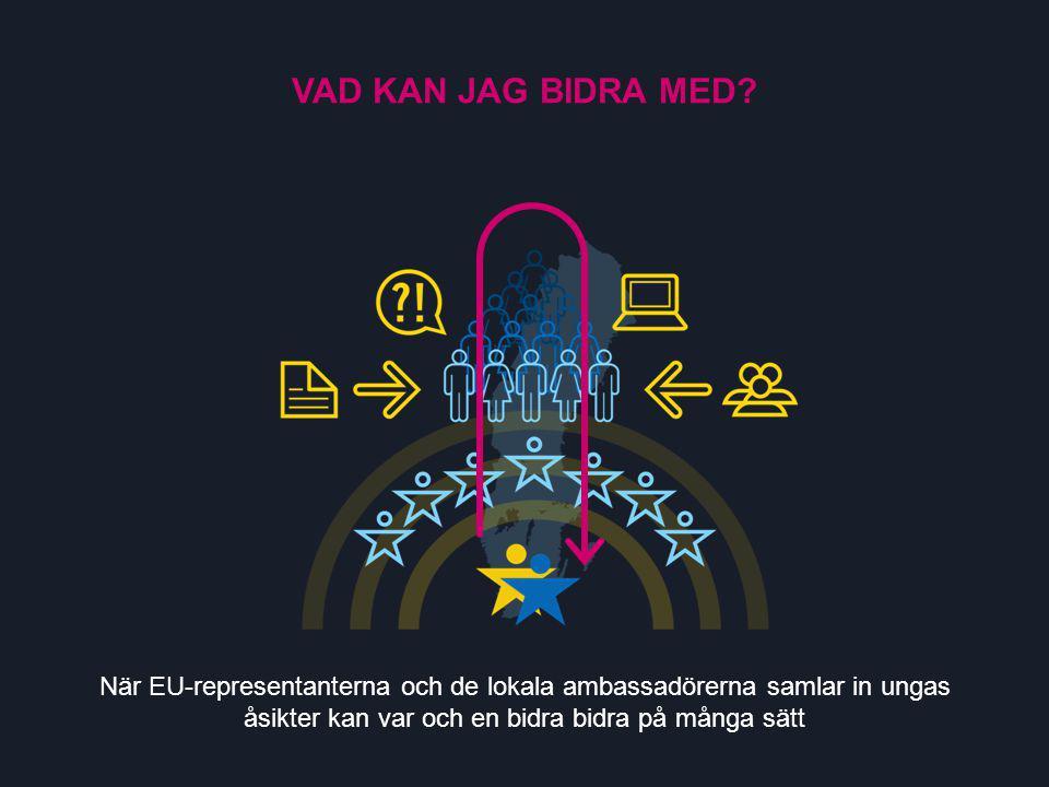 När EU-representanterna och de lokala ambassadörerna samlar in ungas åsikter kan var och en bidra bidra på många sätt VAD KAN JAG BIDRA MED