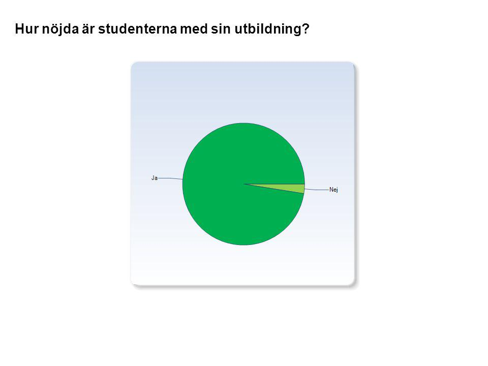 Hur nöjda är studenterna med sin utbildning?