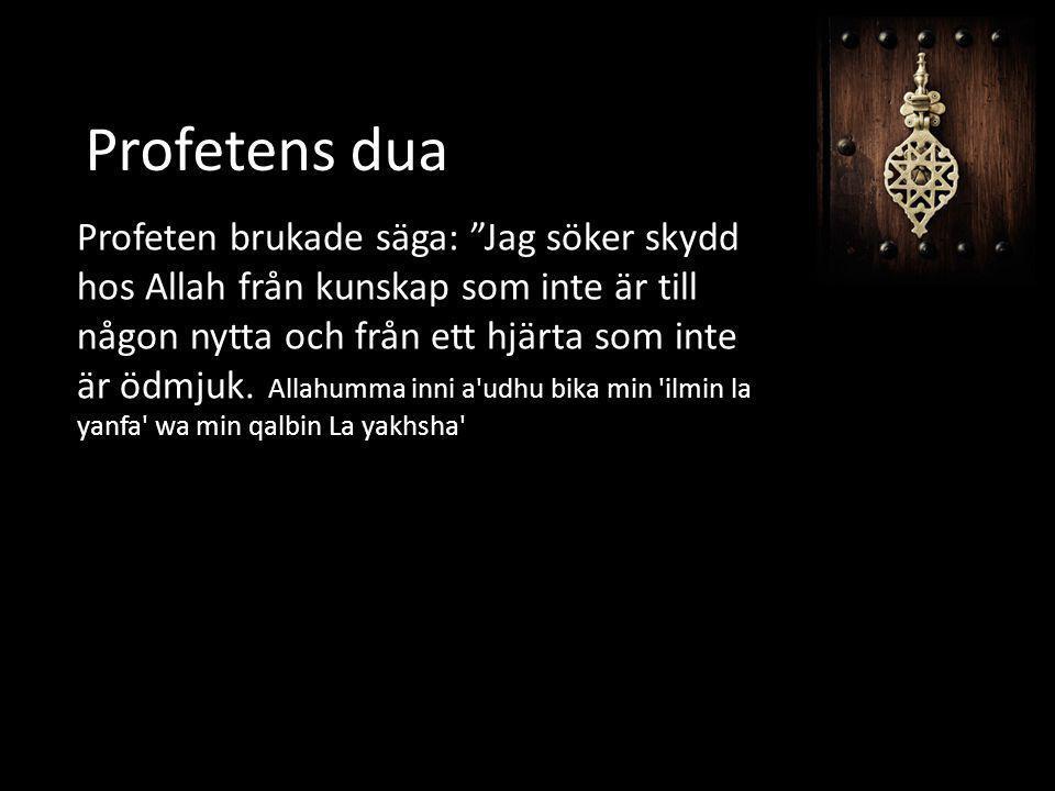 """Profetens dua Profeten brukade säga: """"Jag söker skydd hos Allah från kunskap som inte är till någon nytta och från ett hjärta som inte är ödmjuk. Alla"""