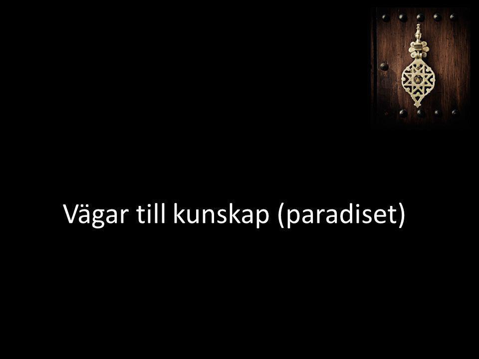 Vägar till kunskap (paradiset)