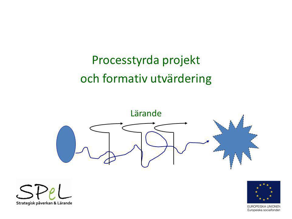 Processtyrda projekt och formativ utvärdering Lärande