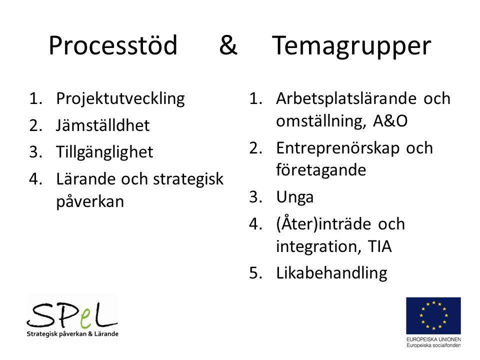 Processtöd & Temagrupper 1.Projektutveckling 2.Jämställdhet 3.Tillgänglighet 4.Lärande och strategisk påverkan 1.Arbetsplatslärande och omställning, A
