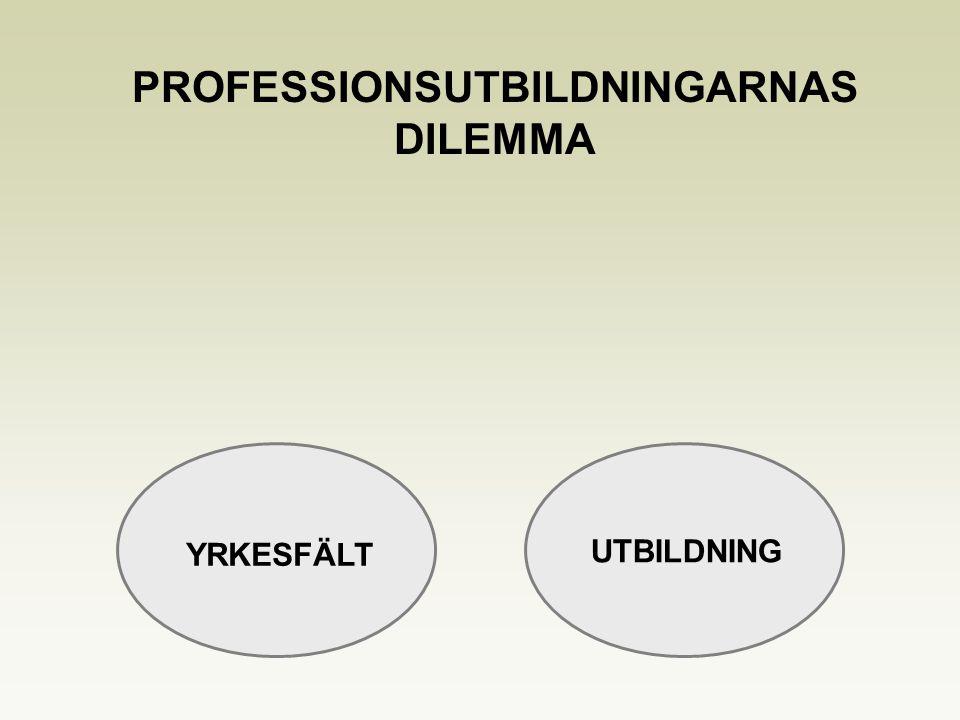 YRKESFÄLT UTBILDNING PROFESSIONSUTBILDNINGARNAS DILEMMA