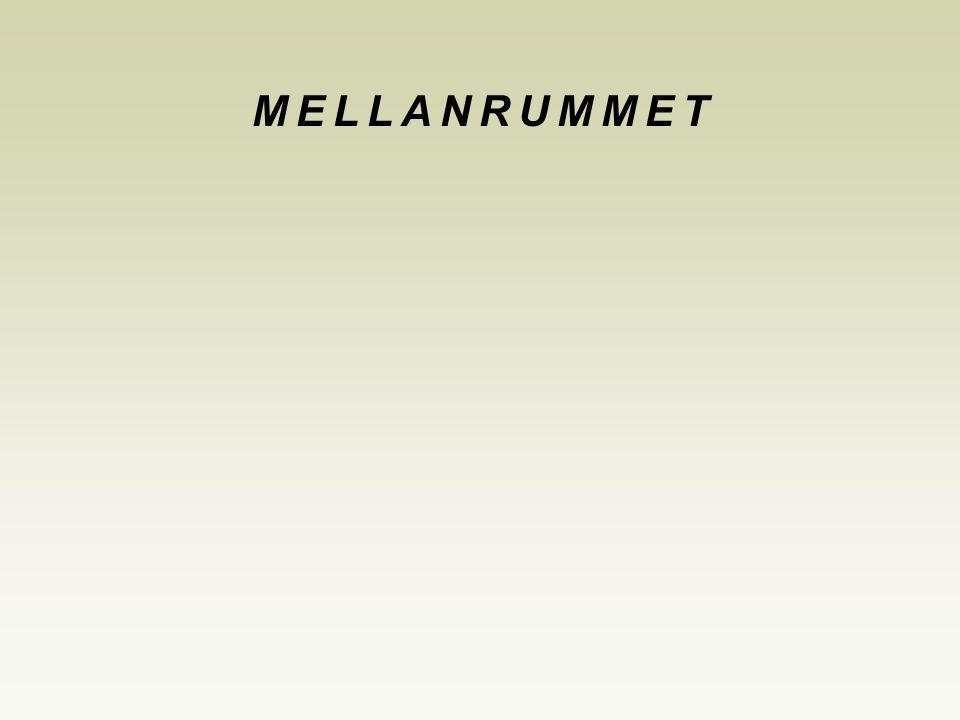 MELLANRUMMET