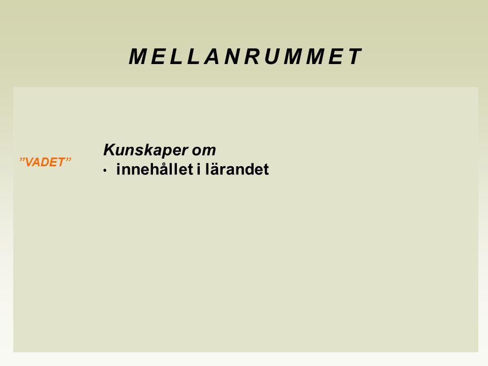 """Kunskaper om innehållet i lärandet """"VADET"""" MELLANRUMMET"""