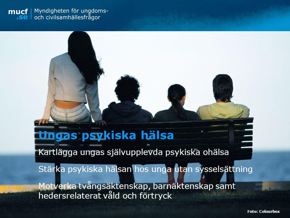 Kartlägga ungas självupplevda psykiska ohälsa Stärka psykiska hälsan hos unga utan sysselsättning Motverka tvångsäktenskap, barnäktenskap samt hedersrelaterat våld och förtryck Ungas psykiska hälsa Foto: Colourbox