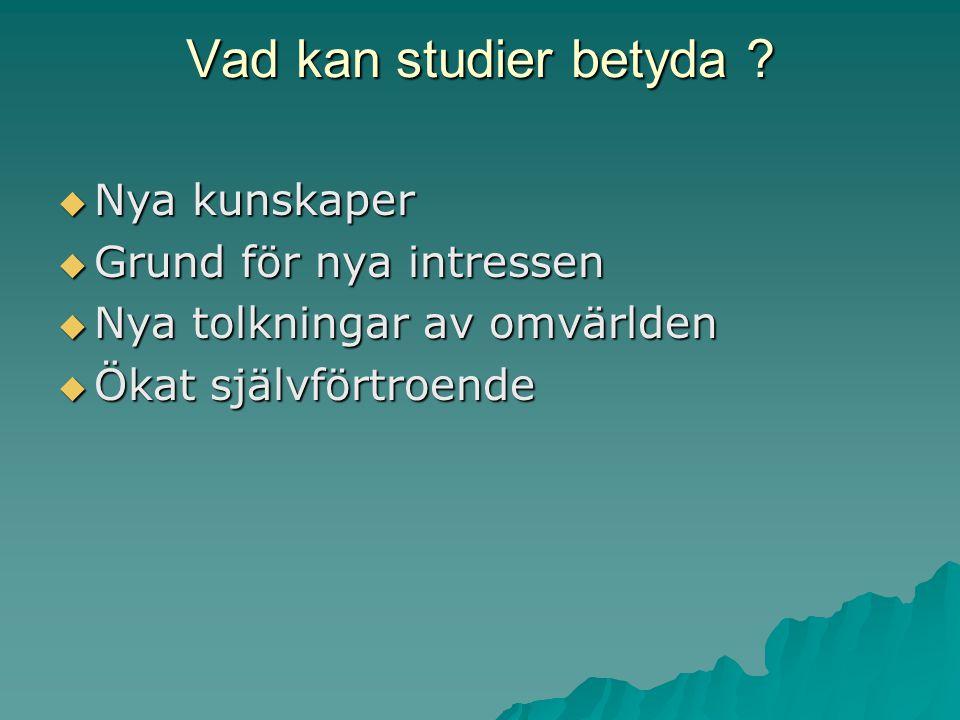 Vad kan studier betyda .