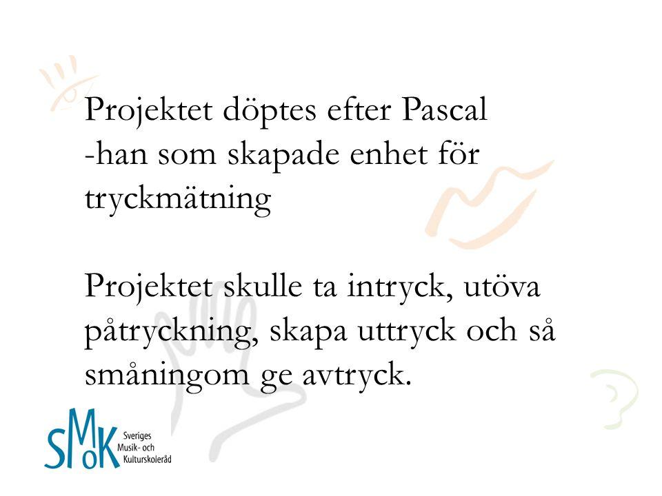 Projektet döptes efter Pascal -han som skapade enhet för tryckmätning Projektet skulle ta intryck, utöva påtryckning, skapa uttryck och så småningom ge avtryck.