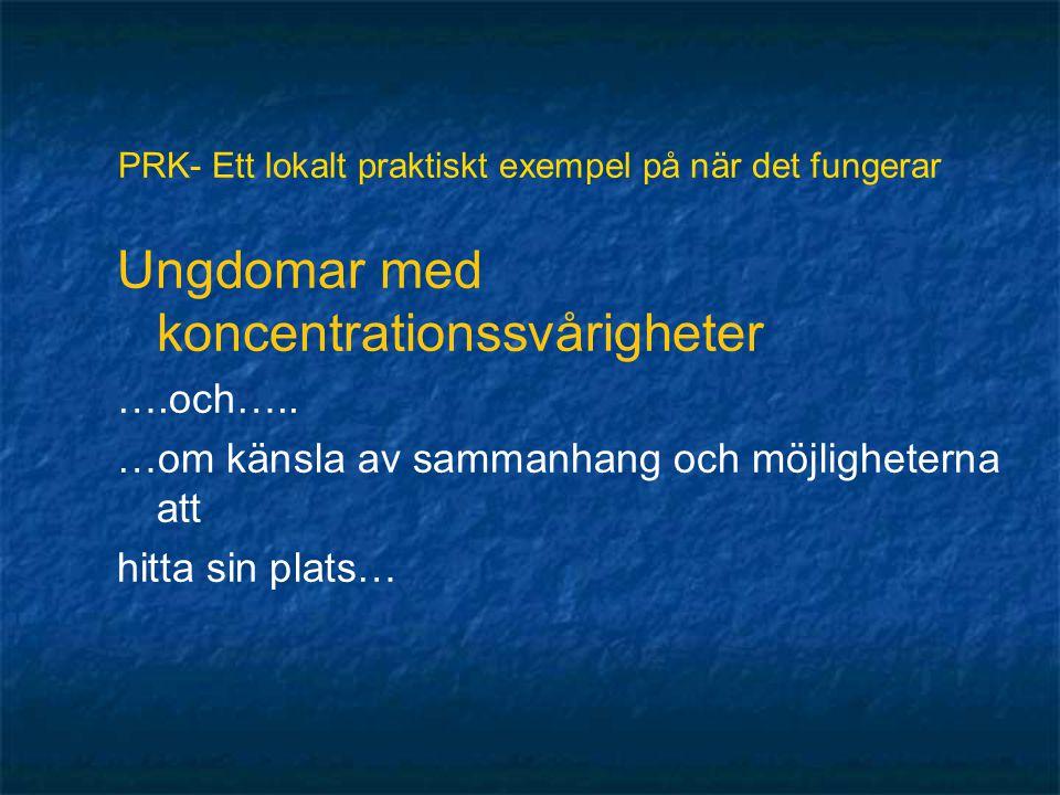 PRK- Ett lokalt praktiskt exempel på när det fungerar Ungdomar med koncentrationssvårigheter ….och…..