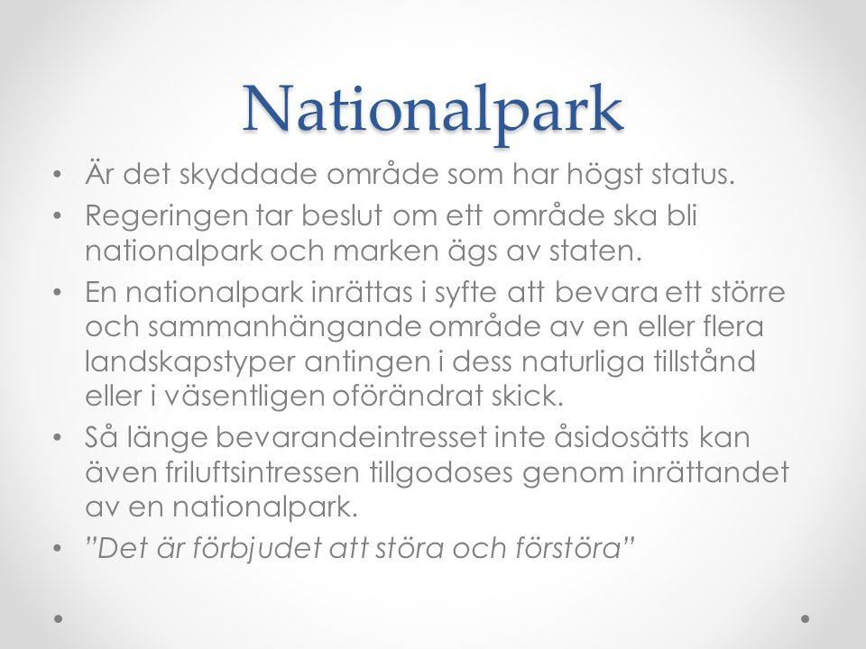 Nationalpark Är det skyddade område som har högst status. Regeringen tar beslut om ett område ska bli nationalpark och marken ägs av staten. En nation