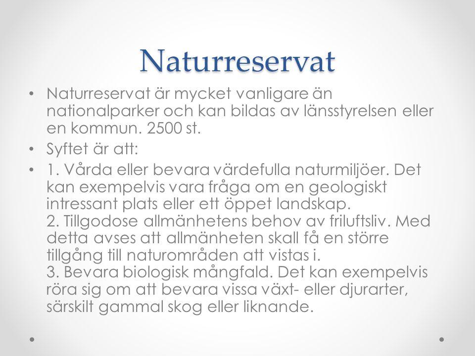Naturreservat Naturreservat är mycket vanligare än nationalparker och kan bildas av länsstyrelsen eller en kommun. 2500 st. Syftet är att: 1. Vårda el