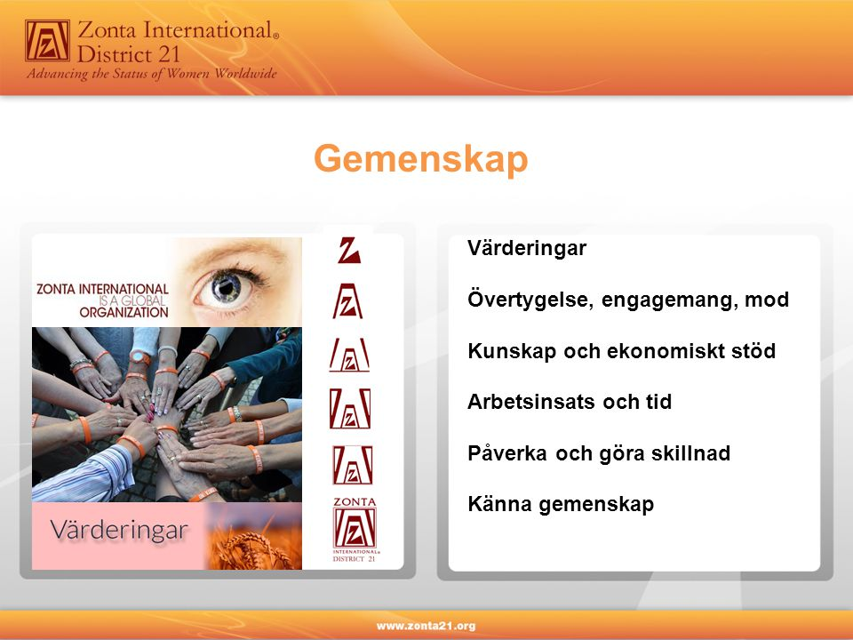 Gemenskap Värderingar Övertygelse, engagemang, mod Kunskap och ekonomiskt stöd Arbetsinsats och tid Påverka och göra skillnad Känna gemenskap