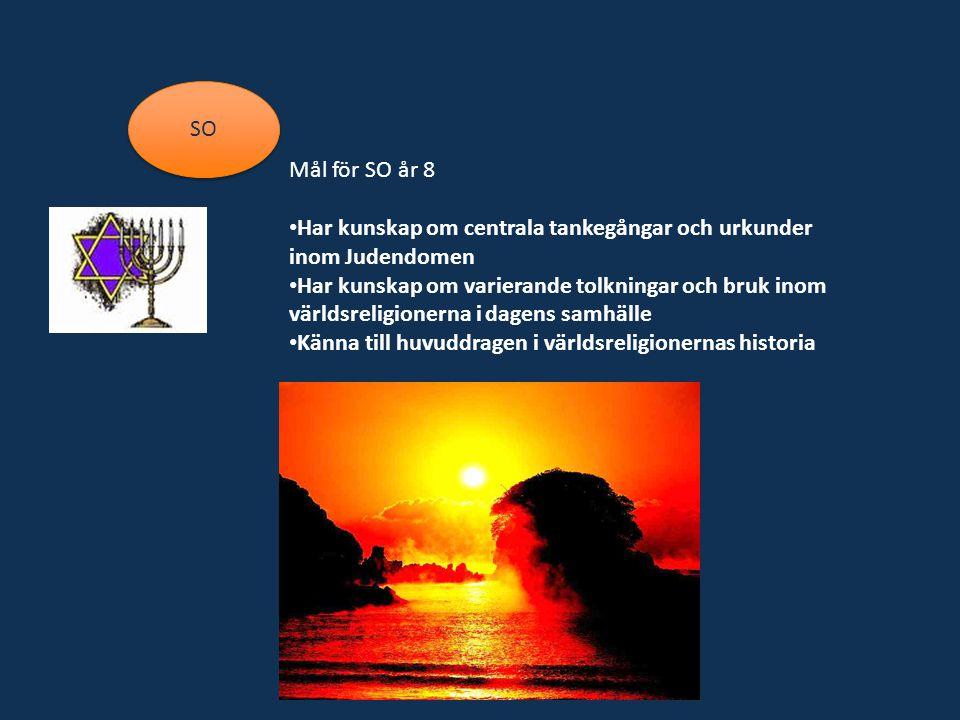 SO Mål för SO år 8 Har kunskap om centrala tankegångar och urkunder inom Judendomen Har kunskap om varierande tolkningar och bruk inom världsreligionerna i dagens samhälle Känna till huvuddragen i världsreligionernas historia