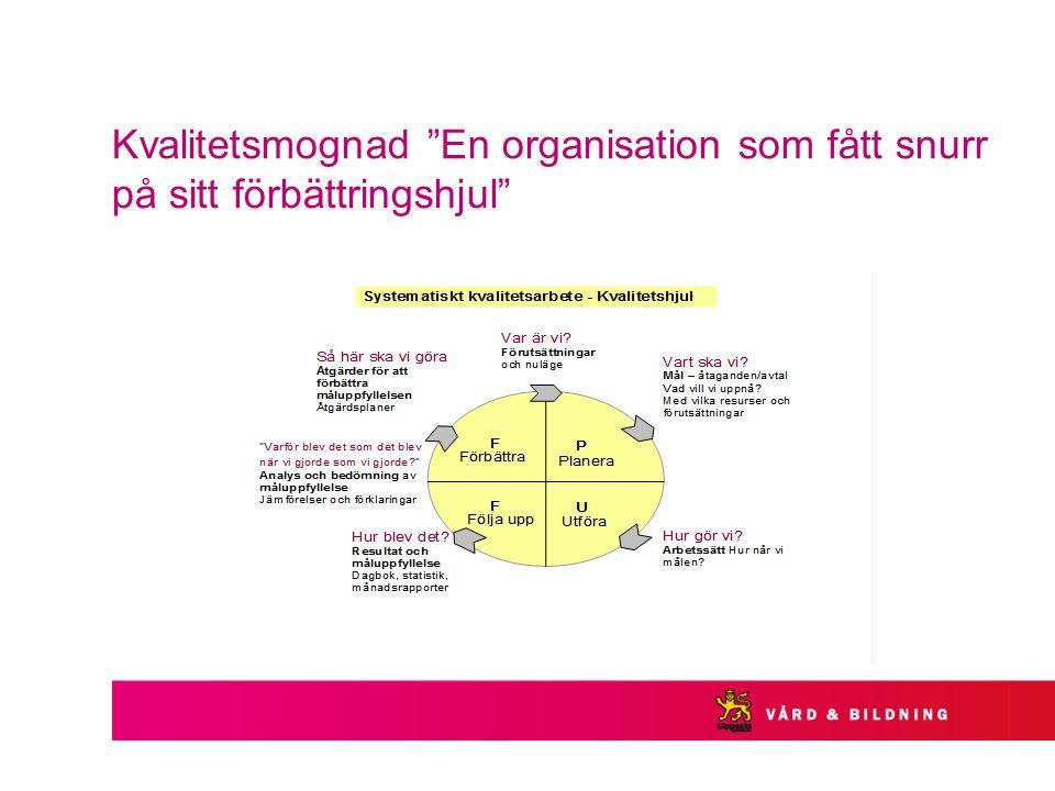 Kvalitetsmognad En organisation som fått snurr på sitt förbättringshjul